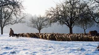 Thurgauer sollen Kulturland zusätzlich schützen