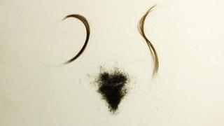 Mit dem Widerstand wuchsen die Haare