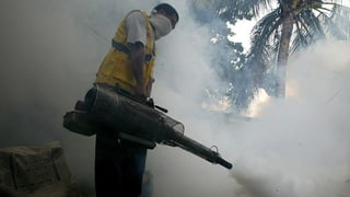 Adina dapli Svizzers cun la fevra da Dengue