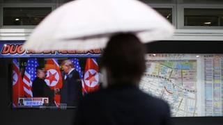 «Japans Bauchschmerzen dürften noch grösser werden»