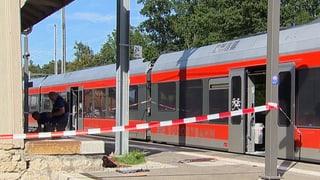 Zug-Attacke: Alles, was man über die Tat weiss