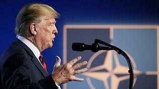 «Die USA fühlen sich der Nato verpflichtet»