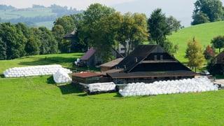 Weniger Geld für grosse Bauernhöfe