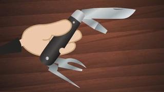 Video «Helveticus: Das Schweizer Messer (19/26)» abspielen