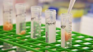 Video «Pestizide im Zuchtlachs: Giftige Chemikalien auf dem Teller» abspielen