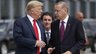 Trump hat angeblich Gülens Auslieferung versprochen (Artikel enthält Video)