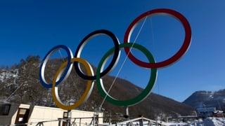 Sportphilosoph rät Regierung von Sotschi-Besuch ab