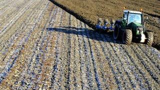 Glyphosat-Streit: Schweiz schaut gespannt nach Brüssel