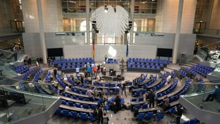 Wer sitzt im Bundestag neben der AfD?