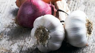 Zwiebel und Knoblauch – Charakterstarke Wunderknollen