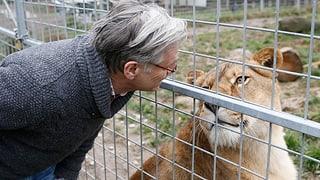 Keine kantonale Finanzhilfe für Stricklers Raubtierpark