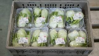 Über 80 Prozent der Bio-Produkte sind in Plastik verpackt