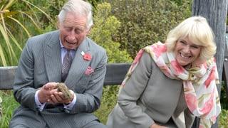 Prinz Schabernack: Die lustigsten Charles-Momente