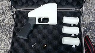 US-Abgeordnetenhaus verlängert Verbot von Plastikwaffen