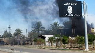 UNO-Massnahmen gegen IS greifen nicht wie gewünscht