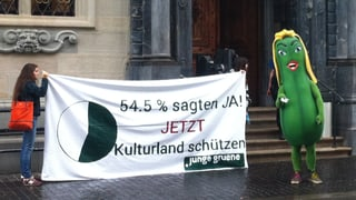 Zürcher Grüne gelangen wegen Kulturland ans Bundesgericht
