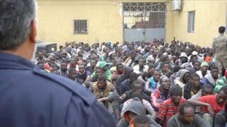 Video «Flüchtlingshölle Libyen» abspielen