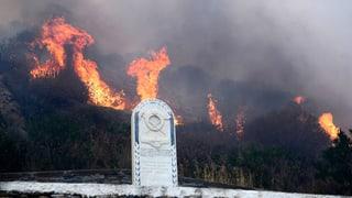 Feuersbrünste auf Ferieninseln Mallorca, Kreta und Rhodos