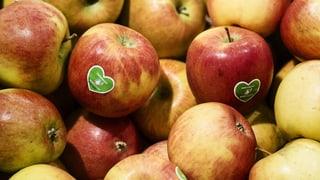 Bio-Produkte als ganz normale Lebensmittel