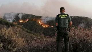 Waldbrände wüten auf Gran Canaria und Zypern