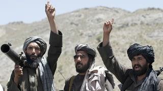 Taliban rufen dreitägige Feuerpause aus