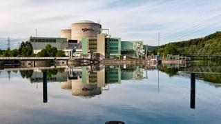 Alle Atomkraftwerke vom Netz - geht doch! Oder?