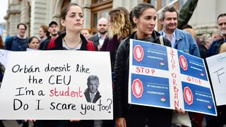 Mega-Protest gegen Orbans Uni-Gesetz