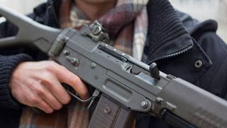 Nationalratskommission bremst bei Verschärfung des Waffenrechts