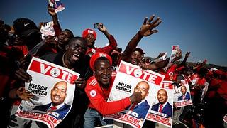Ohne Mugabe scheint alles möglich