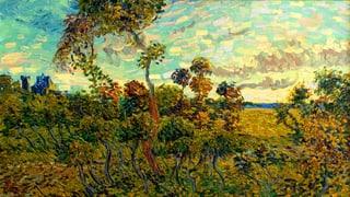 Doch ein van Gogh: Der «Sonnenuntergang bei Montmajour»