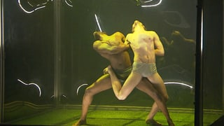 Video «Transformation - Francis Bacons Malerei als Tanzperformance» abspielen