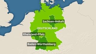 Landtagswahlen in Deutschland: Wie schneidet die AfD ab?