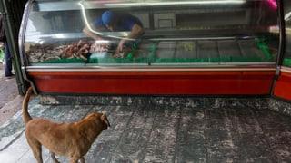 Venezuela droht nicht nur der Staatsbankrott, sondern auch der Hunger: Die aktuelle Lage im Land, kurz erklärt.