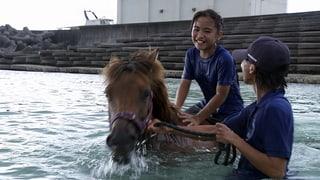 Video «Ich kann das: Urune – Meine Insel, mein Pony (4/15)» abspielen