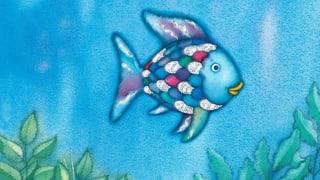 Die Bilderbuchkarriere des Regenbogenfischs