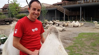 Viktor Röthlin sammelt Meter im Zoo