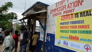 Ebola: WHO befürwortet Einsatz ungetesteter Medikamente