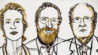 Nobelpreis für Forschung zu grüner chemischer Industrie