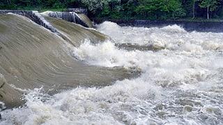 Hochwasserschutzprojekt an der Thur verzögert sich