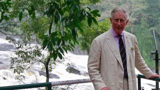 Der ewige Kronprinz Charles wird 65