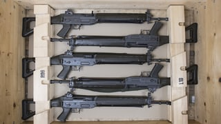 Kompromiss bei Waffenrechts-Revision steht – vorläufig