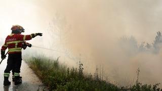 Incendis da guaud en il Portugal