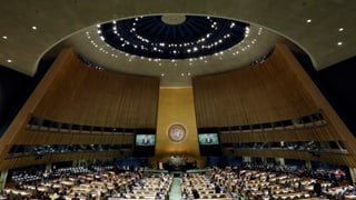 UNO-Generalversammlung: Darum ist die Schweiz so stark vertreten