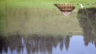 Sommer 2014: Ins Wasser gefallen und dennoch zu warm