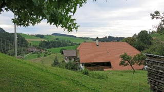 Vom Naherholungsgebiet an der Aare über das lebhafte Zentrum hinaus aufs Land: Was die vielseitige Gemeinde beschäftigt