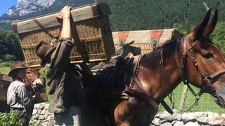 Dreiwöchiges Abenteuer am Gotthard