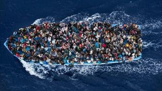 «Die Schlepper auf den Schiffen sind nur die kleinen Fische»