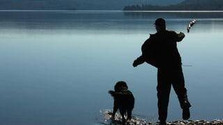 Wie gut ist der Mensch für den Hund?