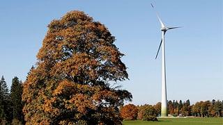 Rückenwind für die Windenergie in Neuenburg (Artikel enthält Audio)