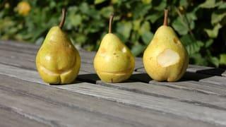 Rezeptideen: Die verschiedenen Gesichter der Birne